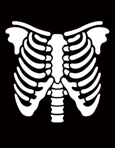 392x503 Skeleton Clipart Ribcage