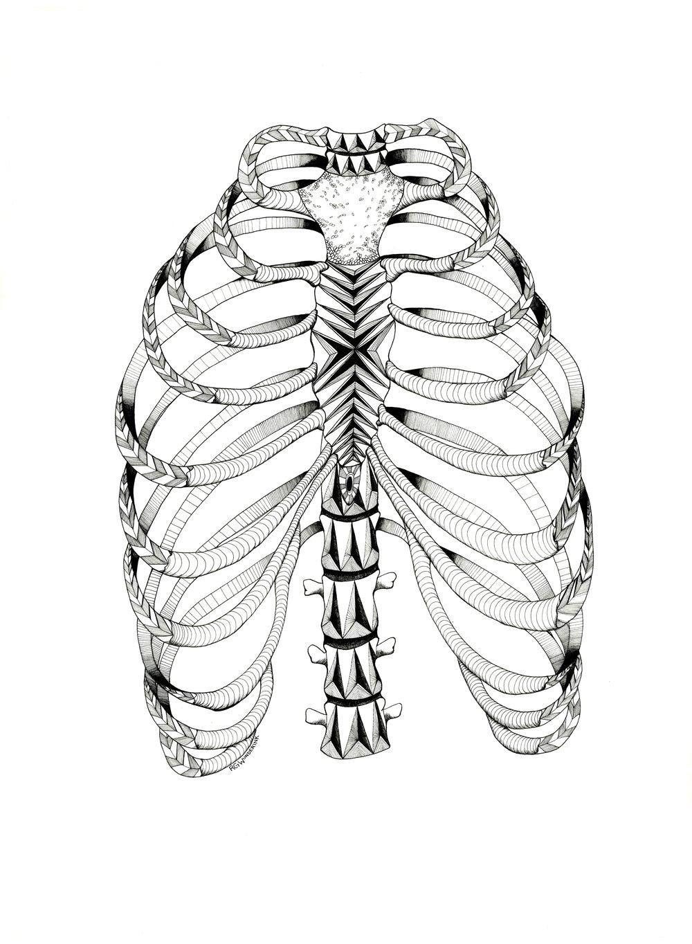 1000x1364 Anatomy Series R.g.wunderink