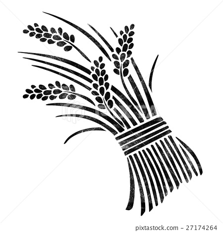 450x468 Ear Of Rice, Paddy, Rice Plant
