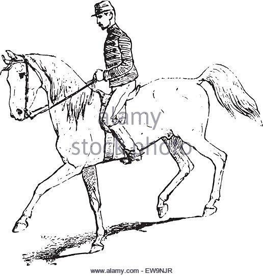 516x540 Riding Horse Antique Drawing Stock Photos Amp Riding Horse Antique
