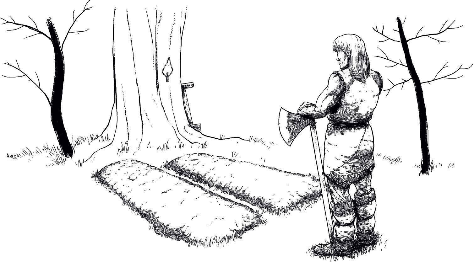 Rip Drawing