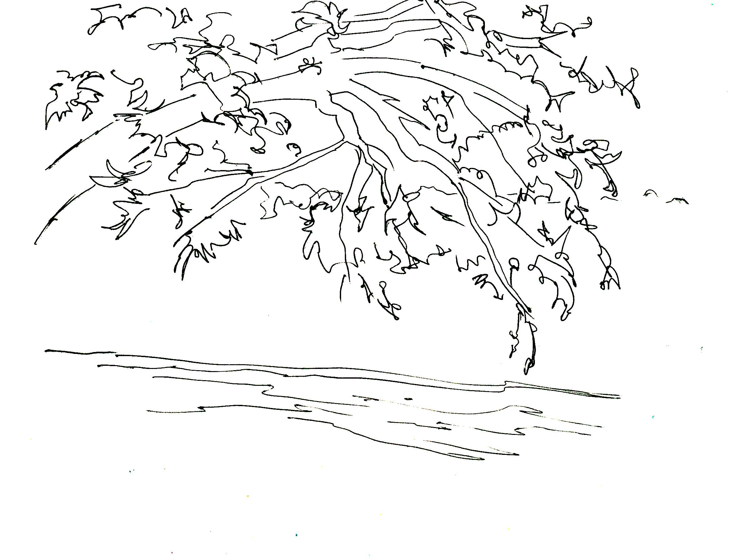 2351x1788 Kayaks On A River Drawings Or Pictures River Drawing My Style