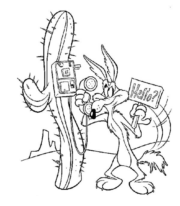 600x685 Wile E Coyote Take A Phone From Roadrunner Coloring Pages Batch