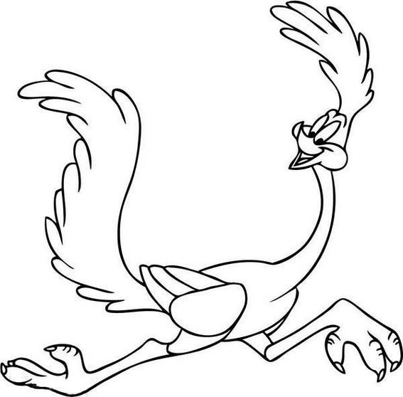 567x558 Top 7 Roadrunner Coloring Pages For Boys And Girls