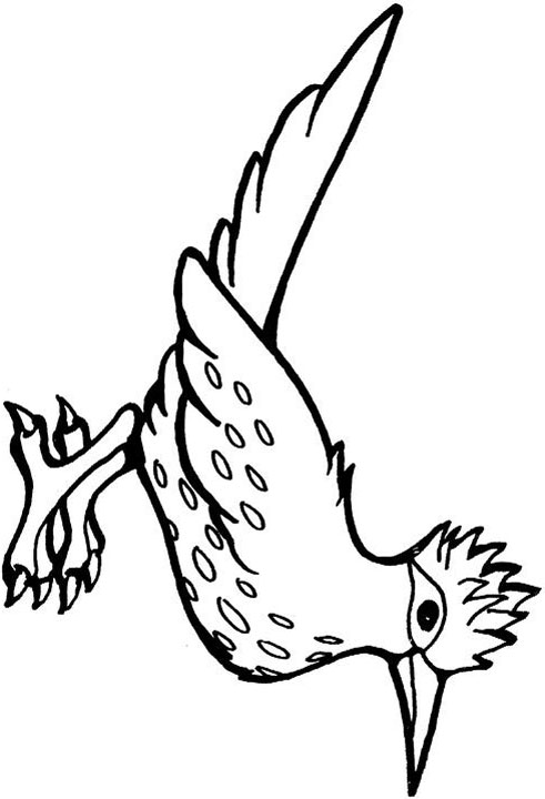 Roadrunner Drawing at GetDrawings.com | Free for personal use ...