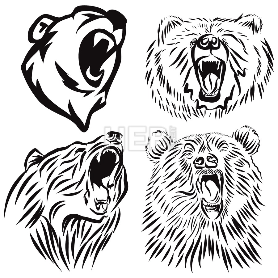 900x900 Four Wild Grizzly Heads, Hand Drawn Vector Roaring Bear Hand