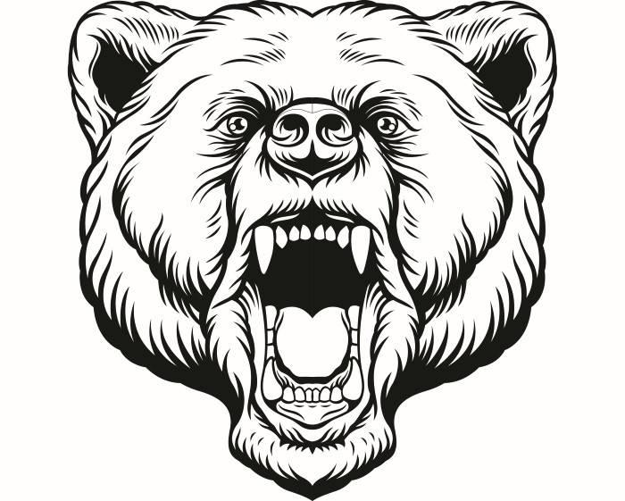 700x561 Grizzly Bear