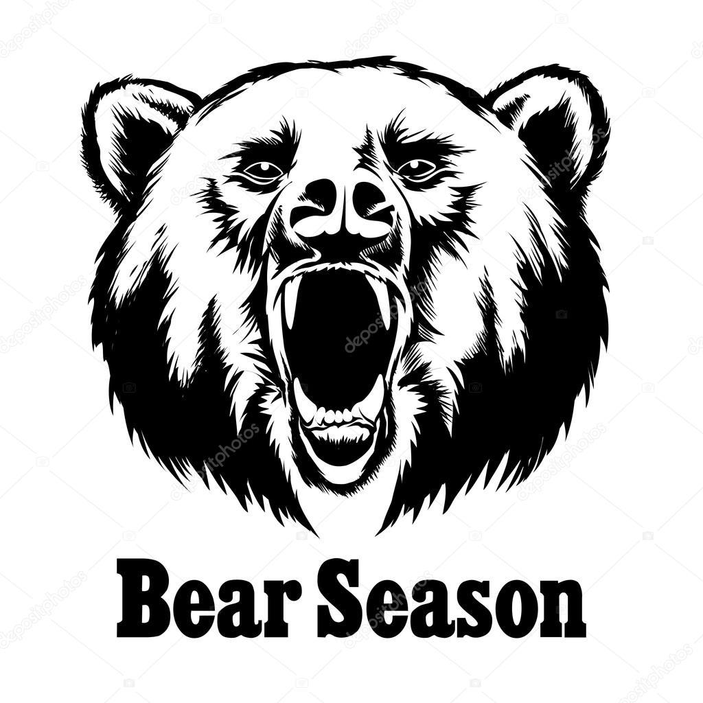 1024x1024 Hand Drawn Vector Roaring Bear. T Shirt Design Stock Vector