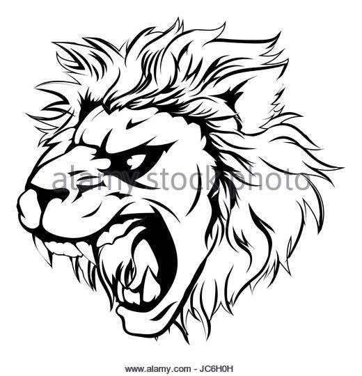 520x540 Lion Roar Cut Out Stock Images Amp Pictures