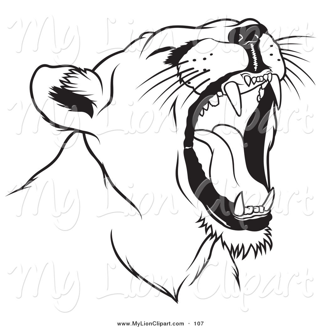 1024x1044 Clipart Of A Black And White Roaring Female Lion Head Facing Right