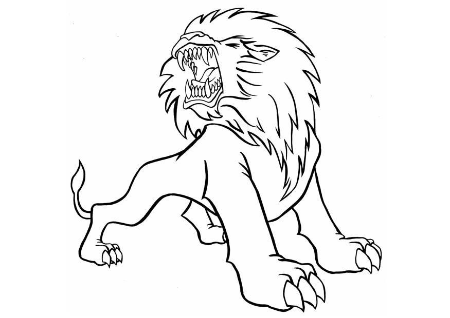 875x620 Coloring Page Roaring Lion