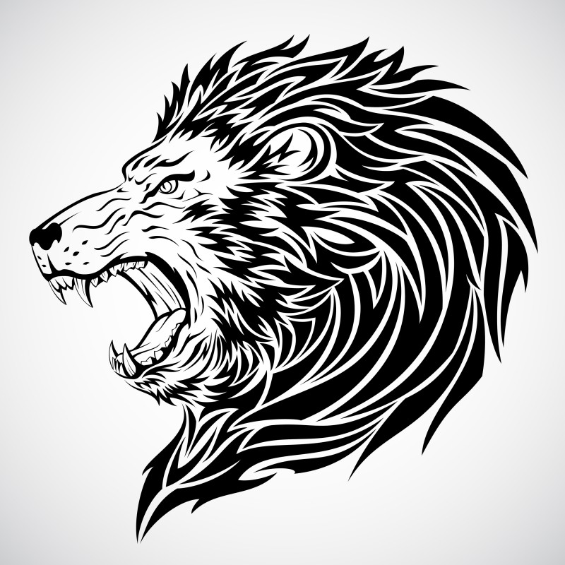 800x800 Furious Roaring Lion's Head Black And White Realistic Detailed