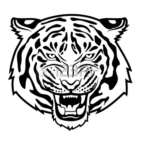450x450 Roaring Tiger Stock Photos. Royalty Free Business Images