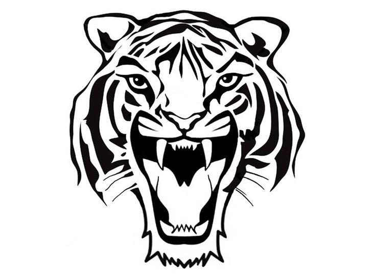 736x541 The Best Tiger Roaring Ideas On Big Cats Art