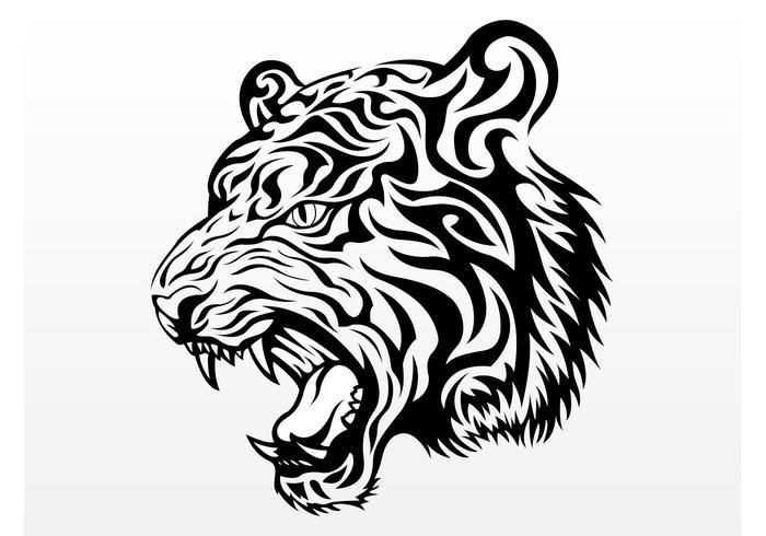 700x490 Tiger Head Vector Graphic