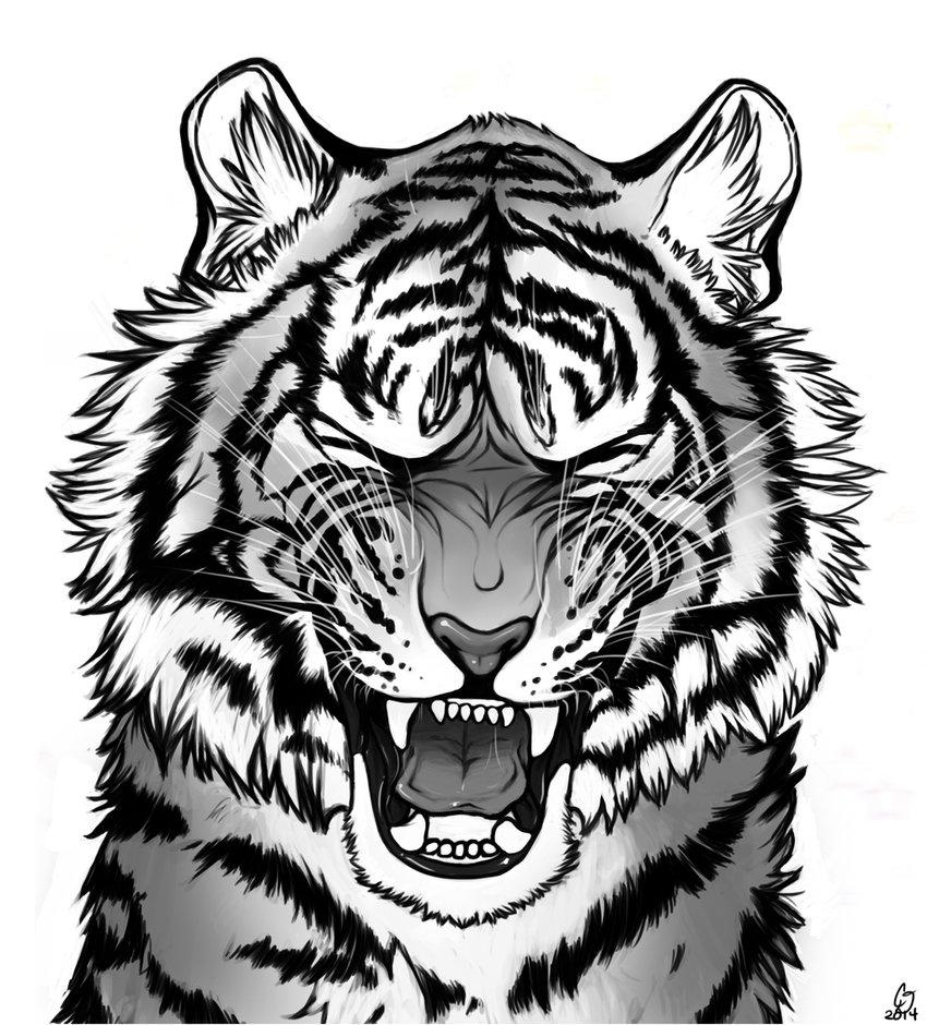 850x940 Tiger Roar By Darkmasterofdragons