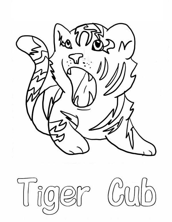 600x776 A Cute Roaring Of Little Tiger Cub Coloring Page