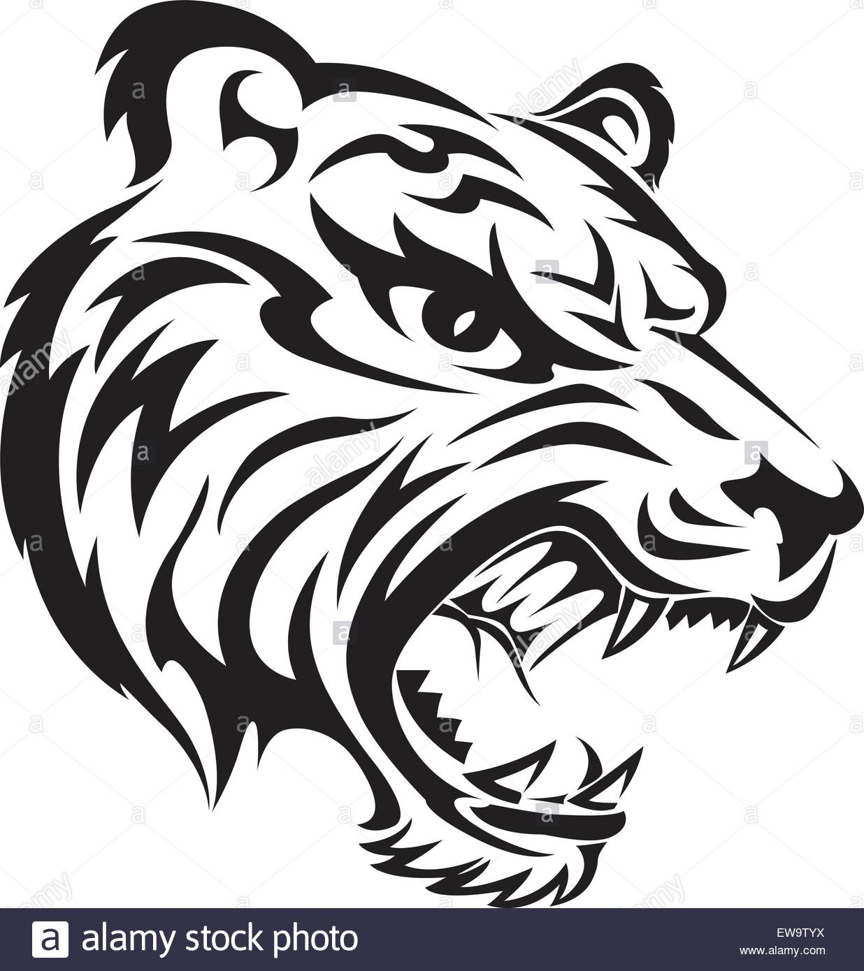 1236x1390 Angry Tiger Face Tattoo Design, Vintage Engraved Illustration