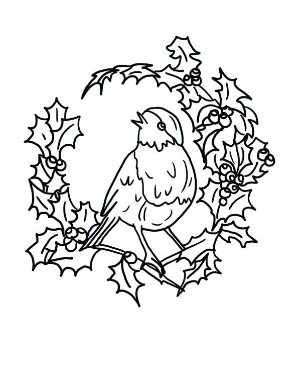 Robin Bird Drawing at GetDrawings | Free download