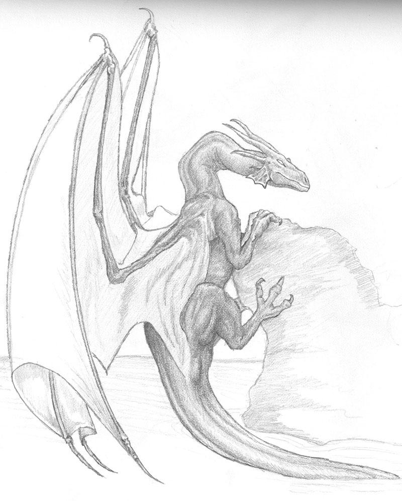 800x996 Dragon Rock Climbing By Trilliah