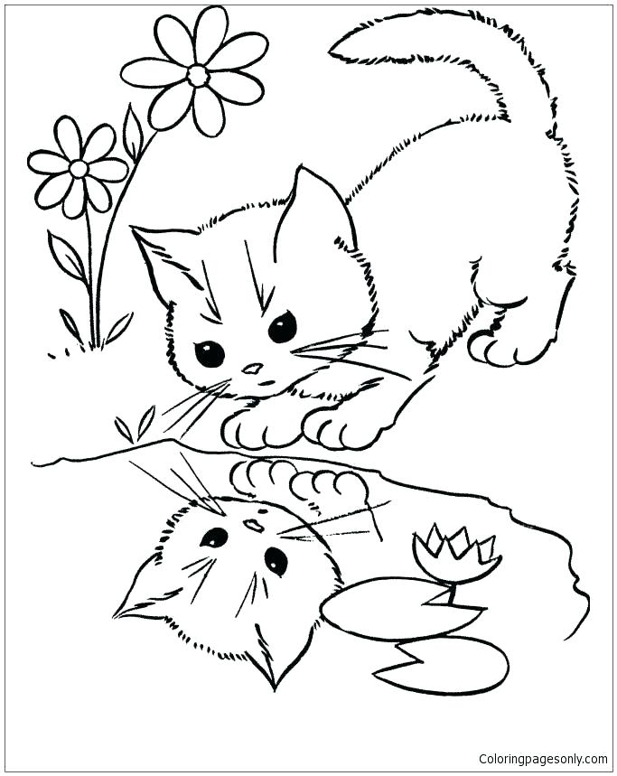 683x859 Awesome Rock Cycle Coloring Page New Water Pages Cat Looking