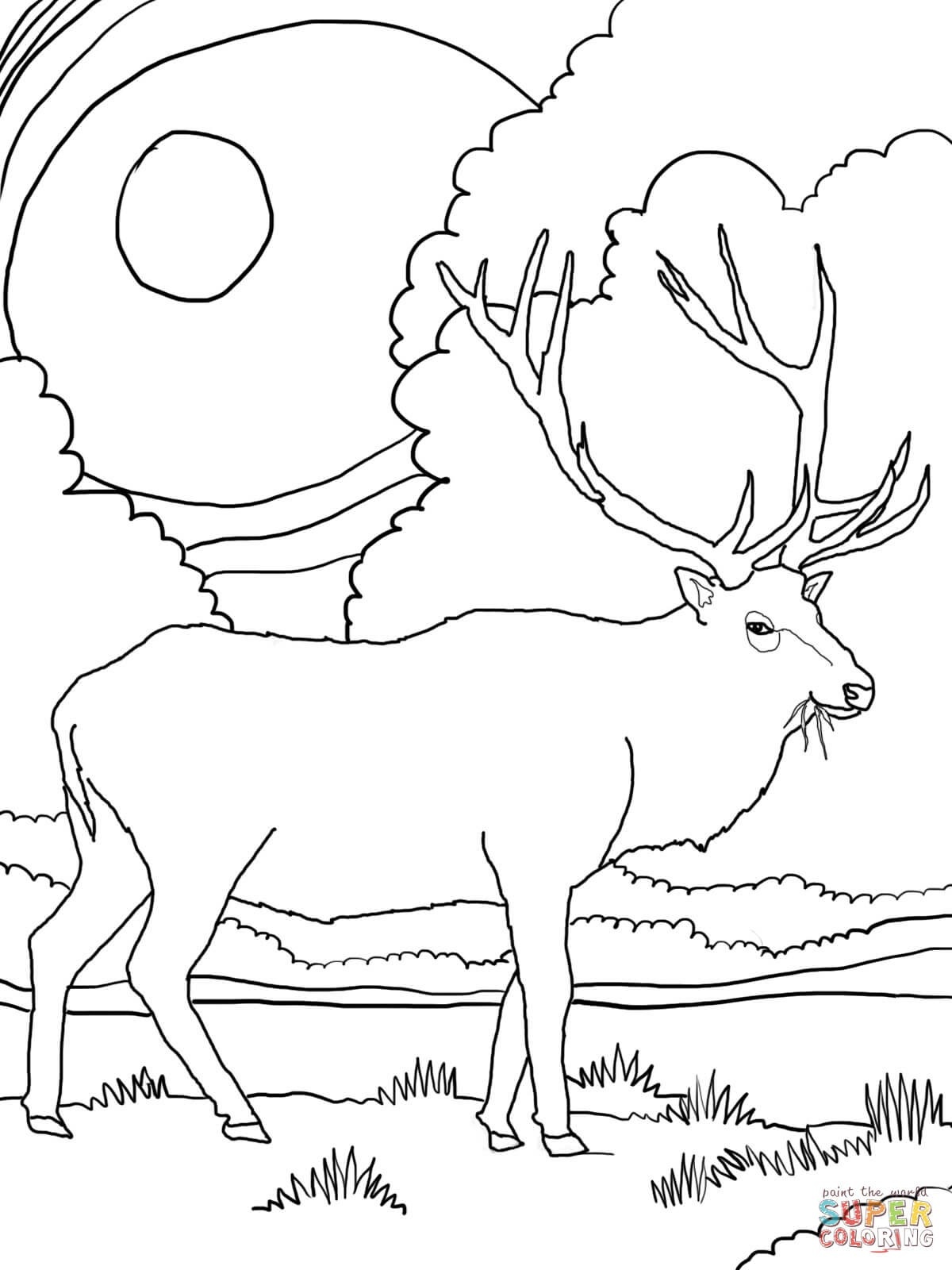 1200x1600 Mountain Coloring Page Inspirational Rocky Mountain Elk Coloring
