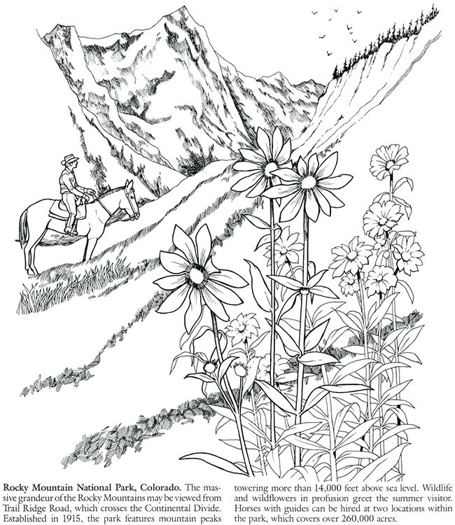 650x750 Elk Coloring Pages Moose Elk Coloring Page Pages Moose Coloring