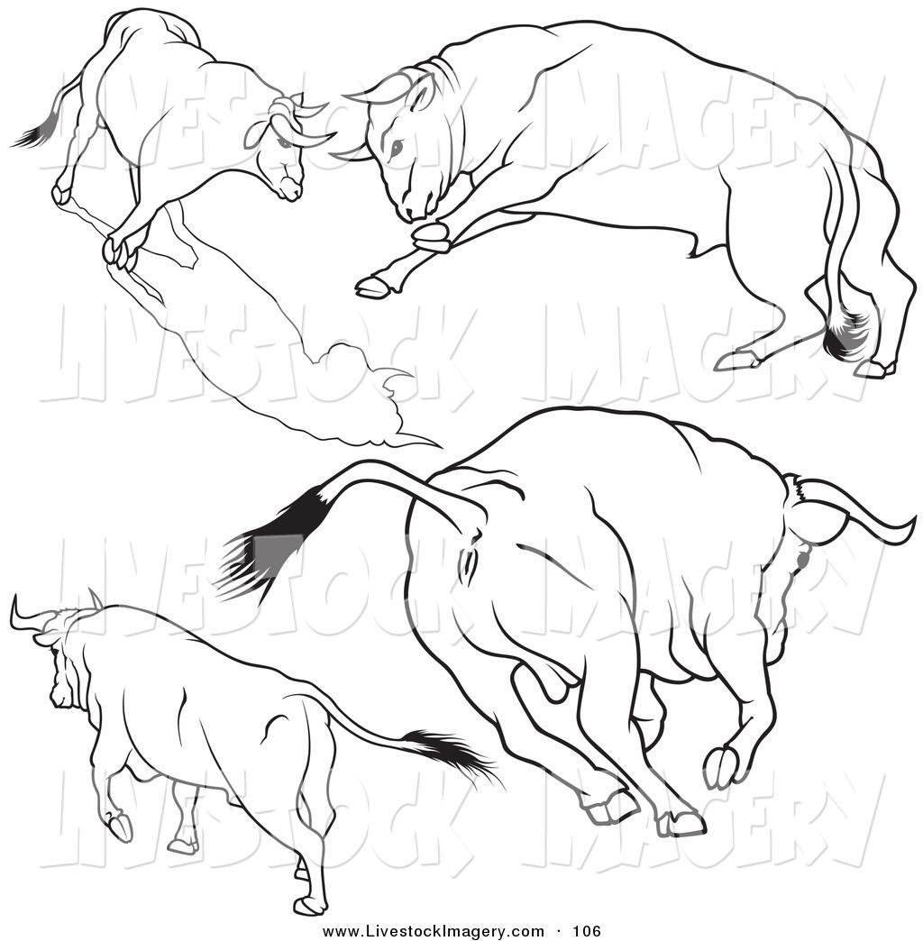1024x1044 Royalty Free Stock Livestock Designs Of Rodeo Bulls