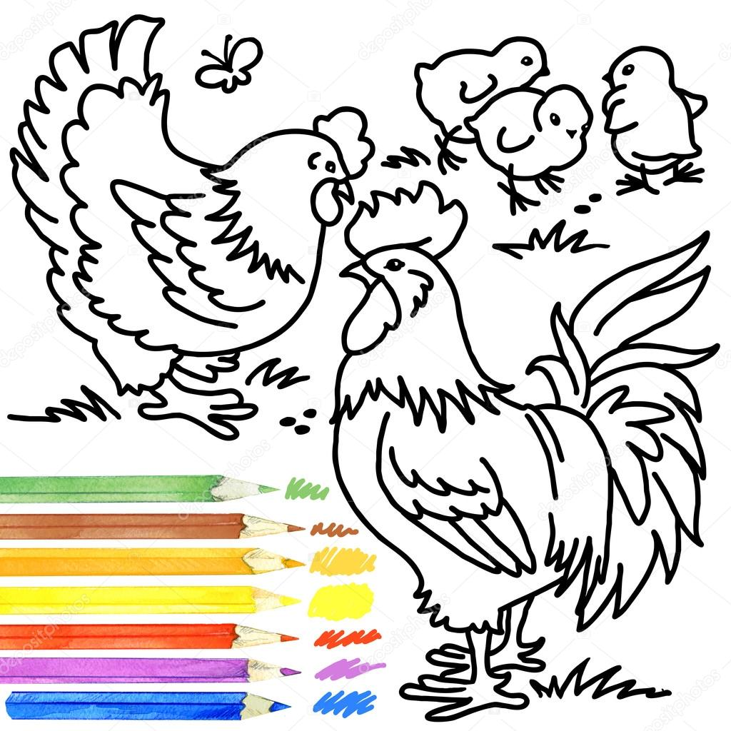 1024x1024 Rooster, Hen,chick. Coloring Book Cock, Hen,chick. Rooster, Hen