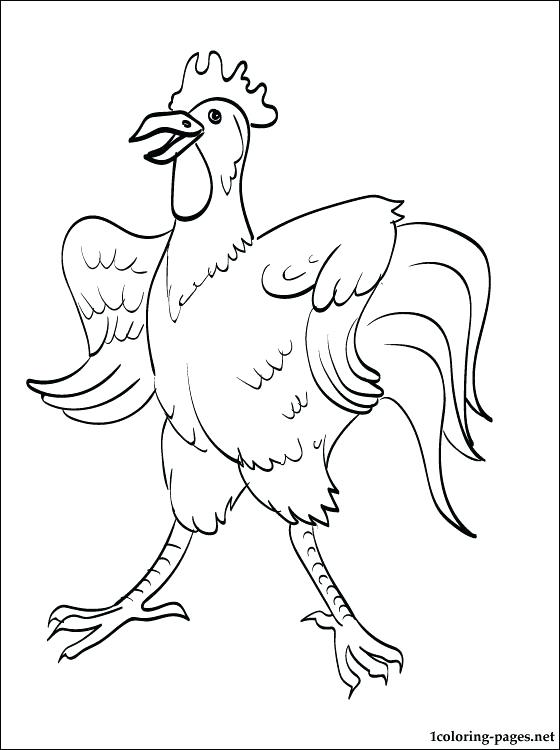 560x750 Best Rooster Coloring Page Free Download Color Book For Adult
