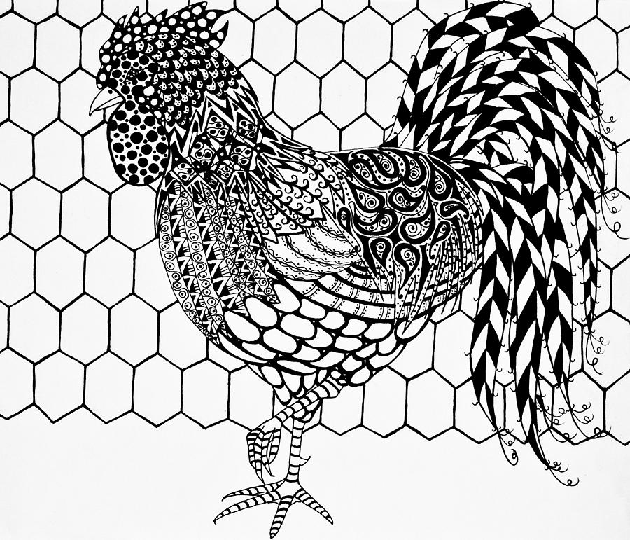 900x771 Zentangle Rooster Drawing By Jani Freimann