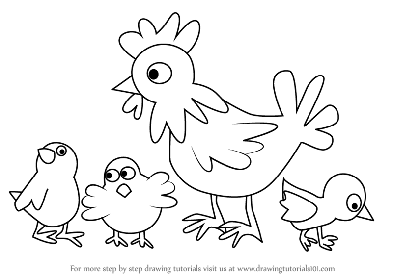 800x567 Step By Step How To Draw Chicken And Chicks