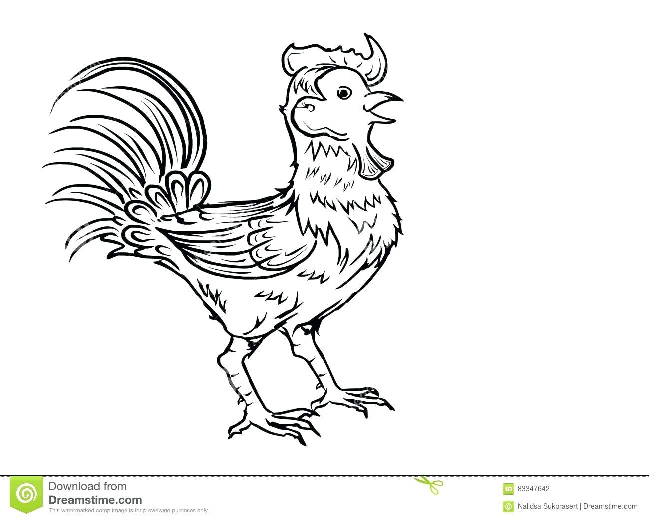 1300x1041 Coloring Pages Excellent Bird Outline Drawing. Kiwi Bird Outline