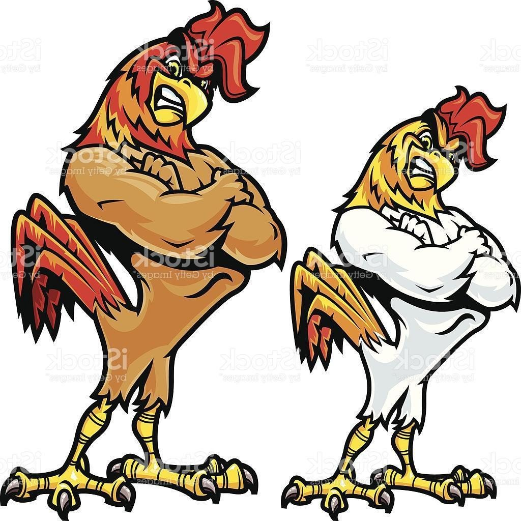 1024x1024 Unique Best Rooster Fighting Stance Vector Images Image
