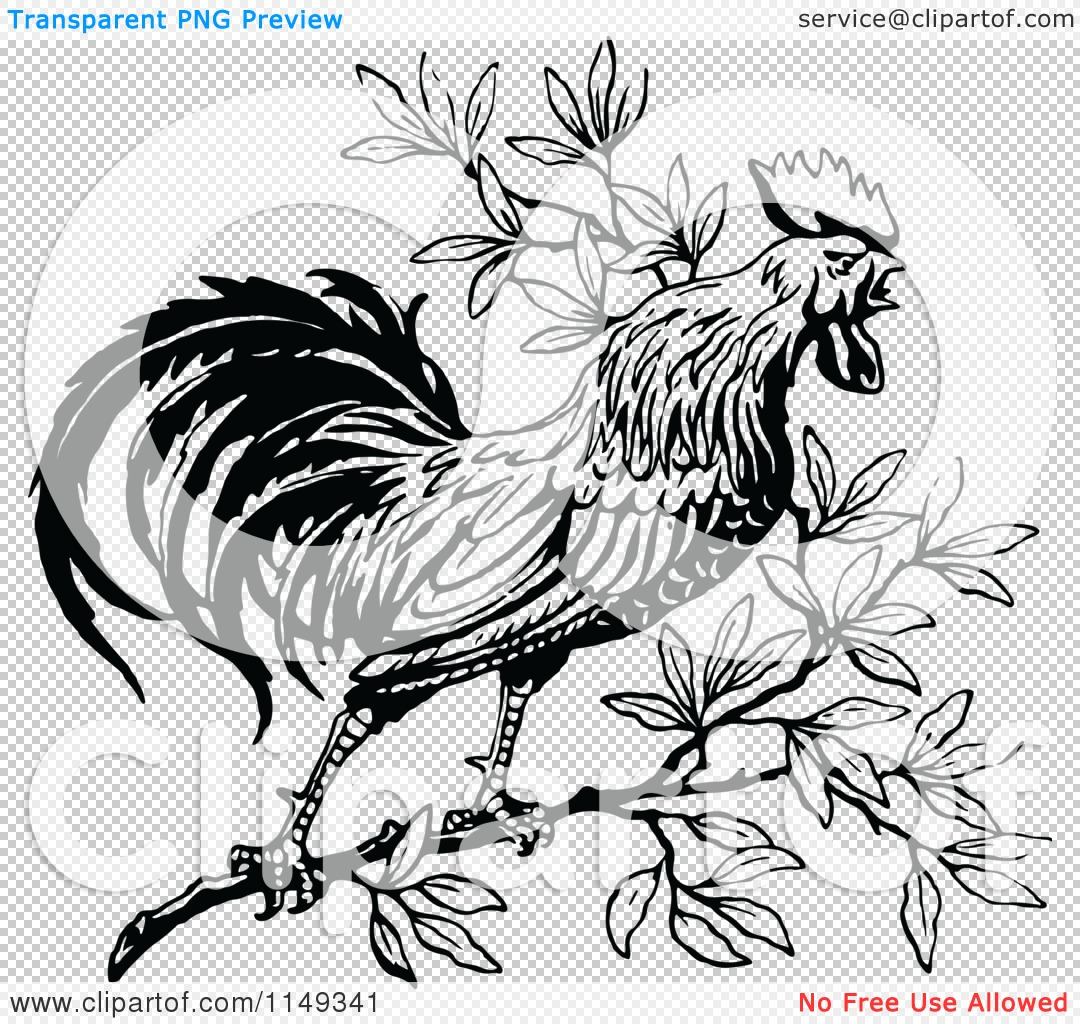 1080x1024 Clipart Of Retro Vintage Blacknd White Crowing Rooster In