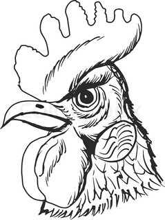 239x320 Rooster Head. Chinese Calendar. Year Of Rooster 2017. Cock Symbol