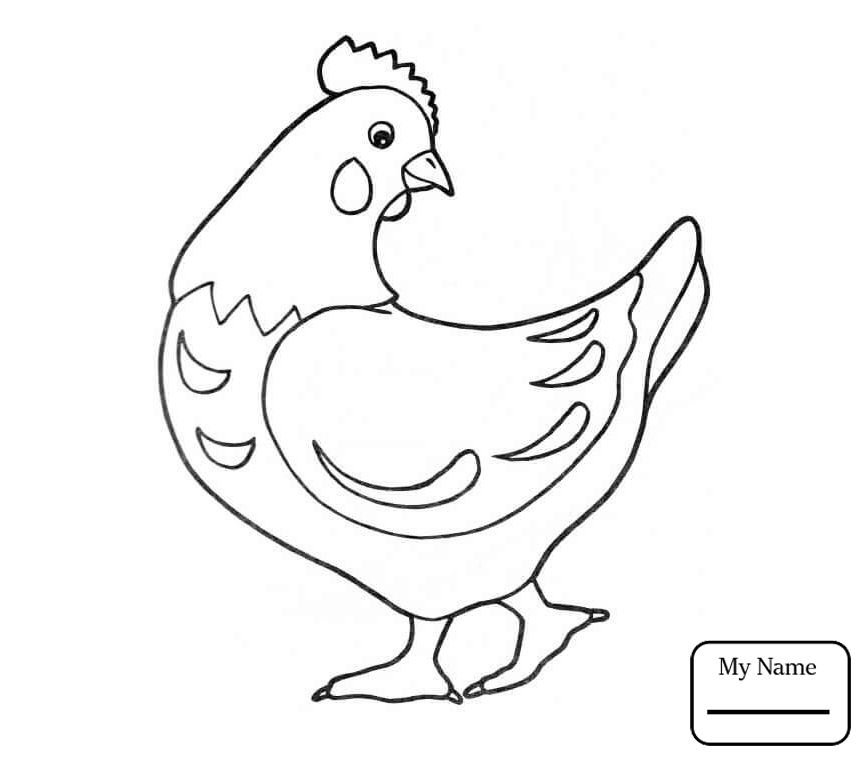 867x761 Chicken Outline Chicken Birds Chicken Coloring Pages For Kids