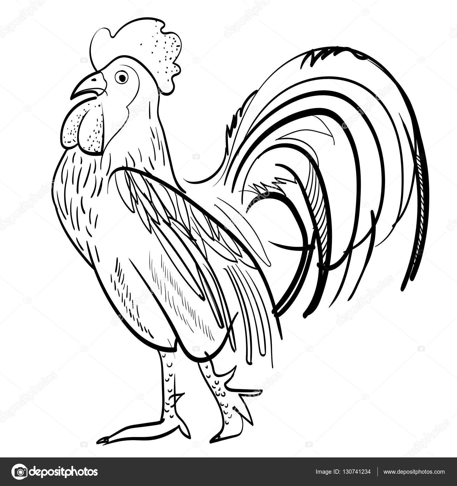 1600x1700 Drawn Rooster Vector