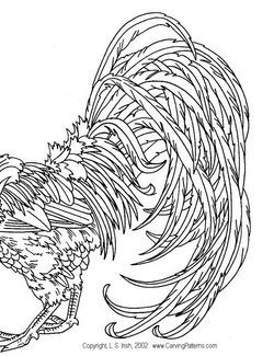 250x325 Fighting Rooster Drawings Free Clip Arts Sanyangfrp
