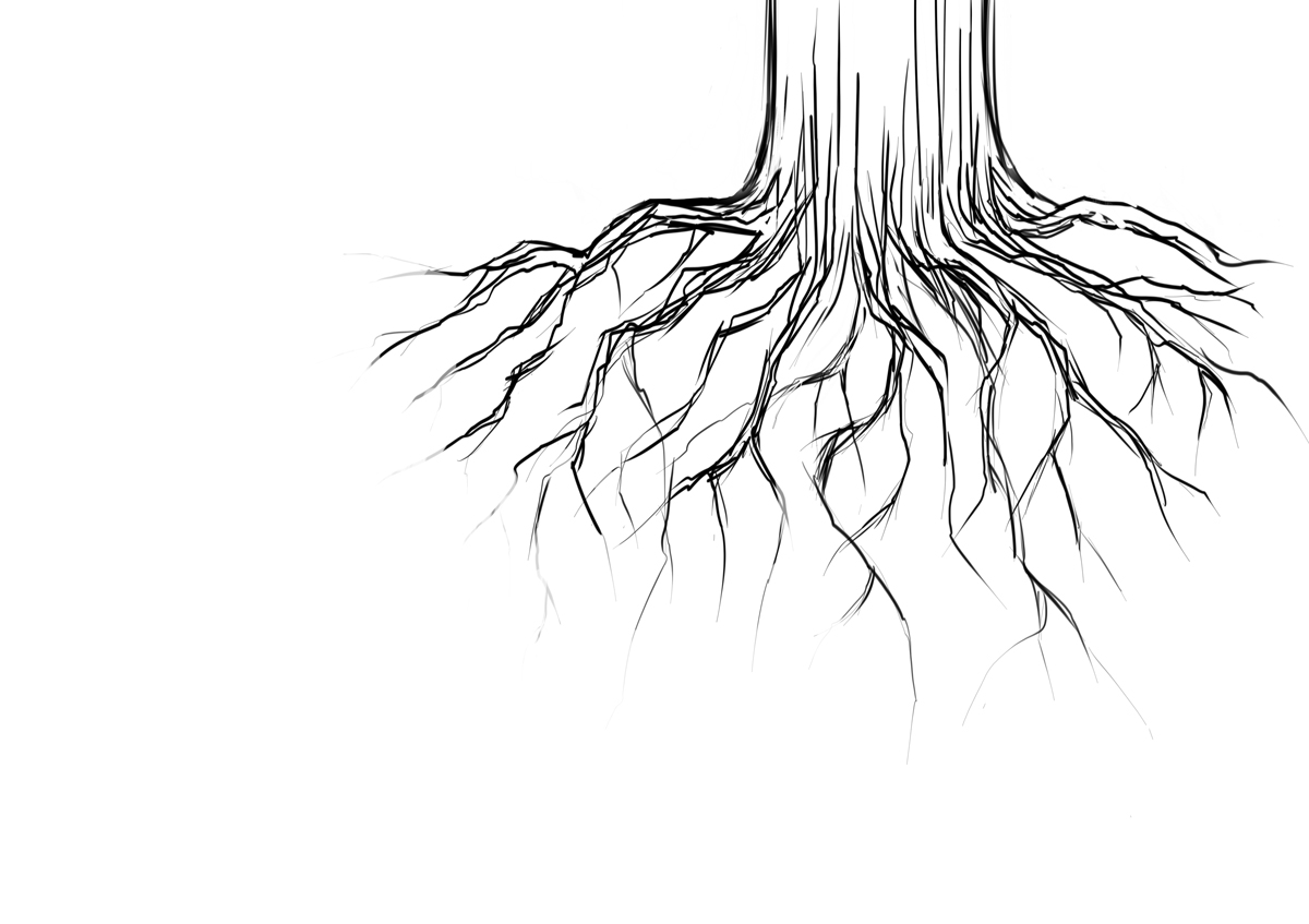 1200x847 13 Tree With Roots Drawing Vector Images