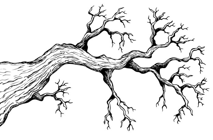 700x463 Tree Theme Drawing 3 Sticker We Live To Change