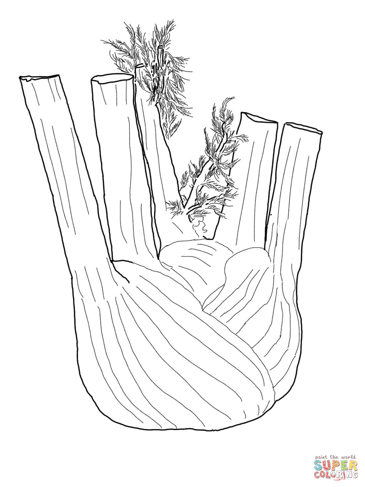 1200x1600 Fennel Root Coloring Page Free Printable Coloring Pages