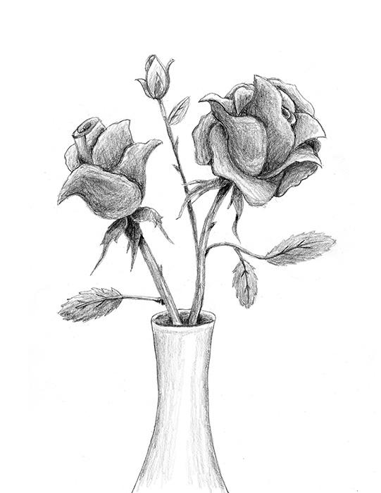 541x700 How To Draw A Rose Lovetoknow