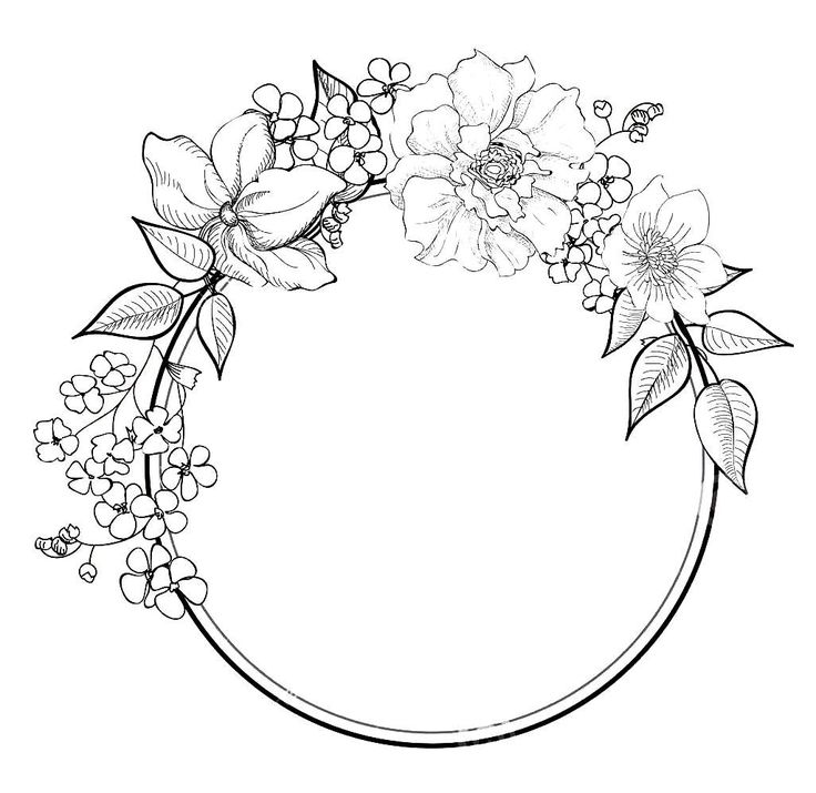 Flower Circle Line Drawing : Flower border drawing at getdrawings free for