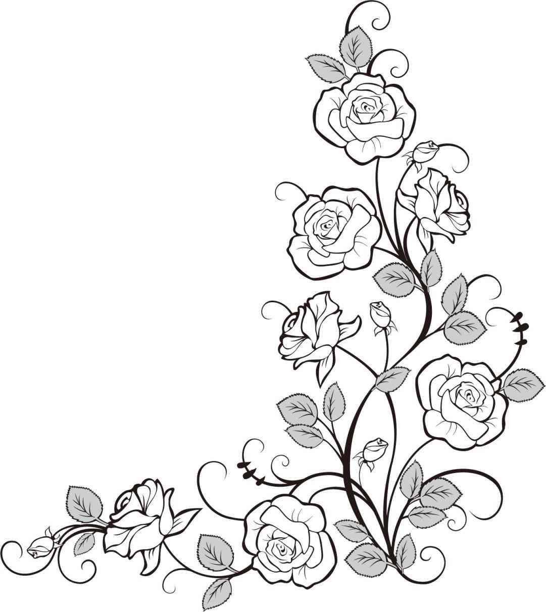 1081x1211 And Vine Icon Transparent Background Klejonka Vine Rose Vine