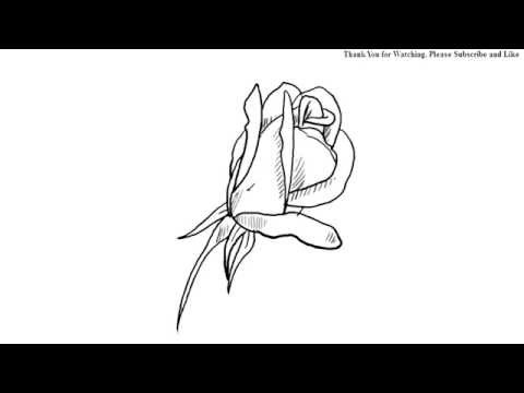 480x360 How To Draw A Beautiful Rose Bud Draw Under One Minute Easy Simple