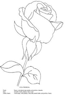 236x324 How To Draw A Rose Bud, Rose Bud, Step By Step, Flowers, Pop