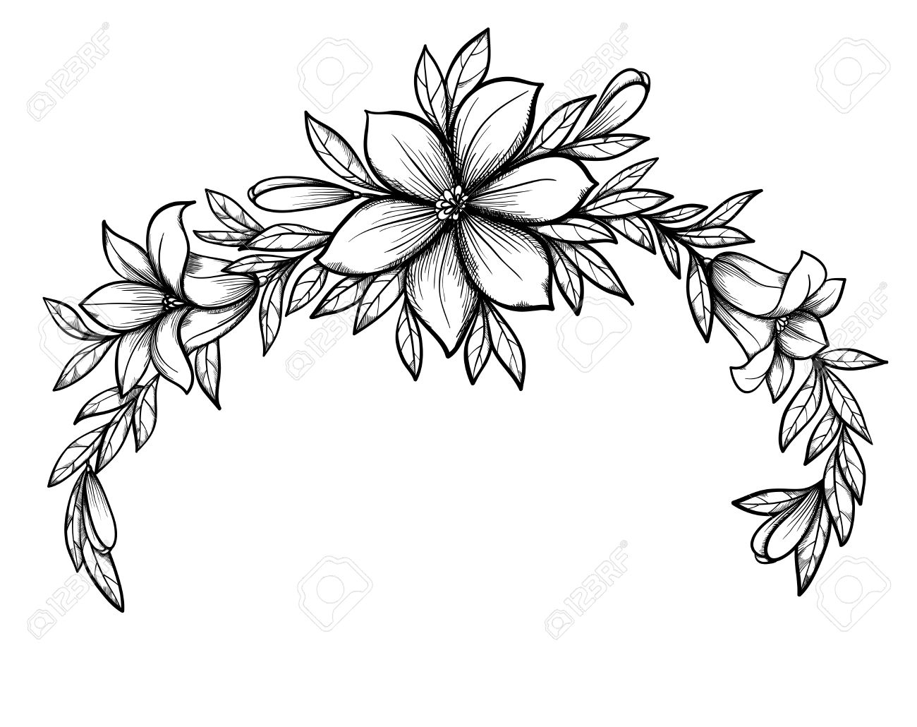 1300x1030 Beautiful Graphic Drawing Lily Branch With Leaves And Buds