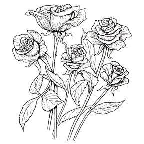 288x288 Click For Larger Picture Of Discontinued Five Roses Large Stamp