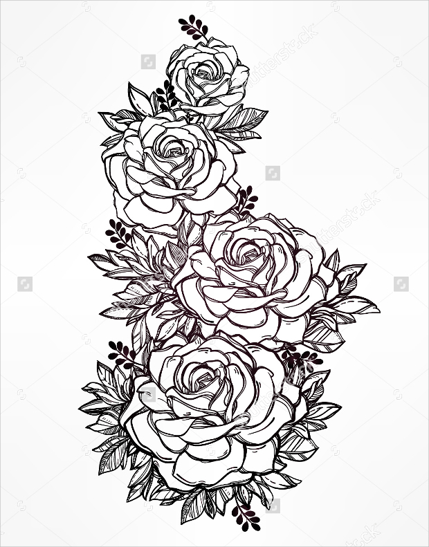 Rose Bush Drawing